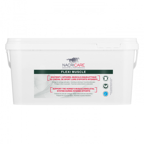 Flexi Muscle 1 Kg - Articulation Cheval