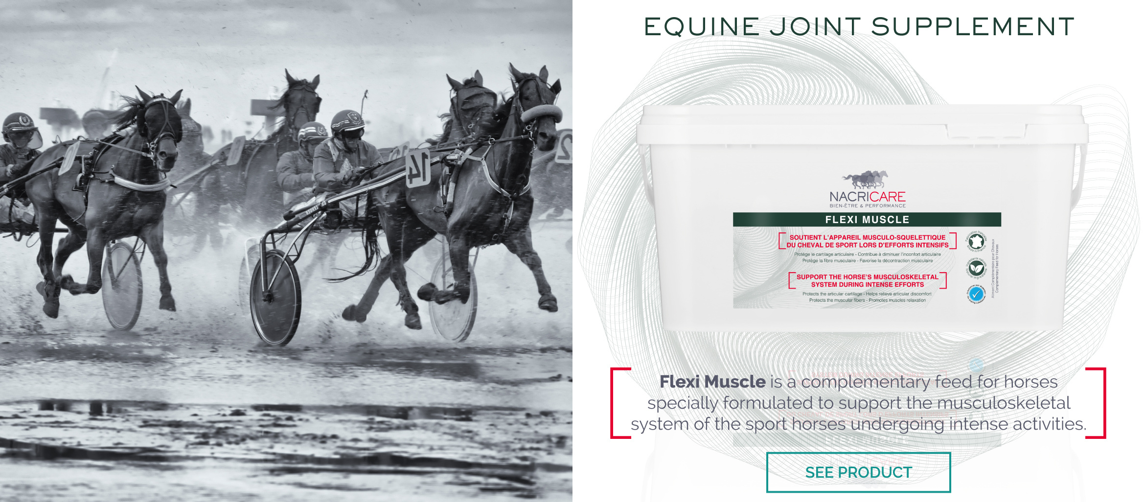 Horse Muscles Supplement - FLEXI MUSCLE NACRICARE