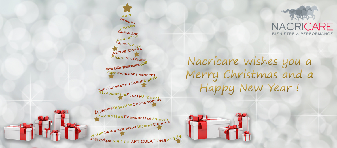 Nacricare wishes you a Merry Christamas and a Happy New Year