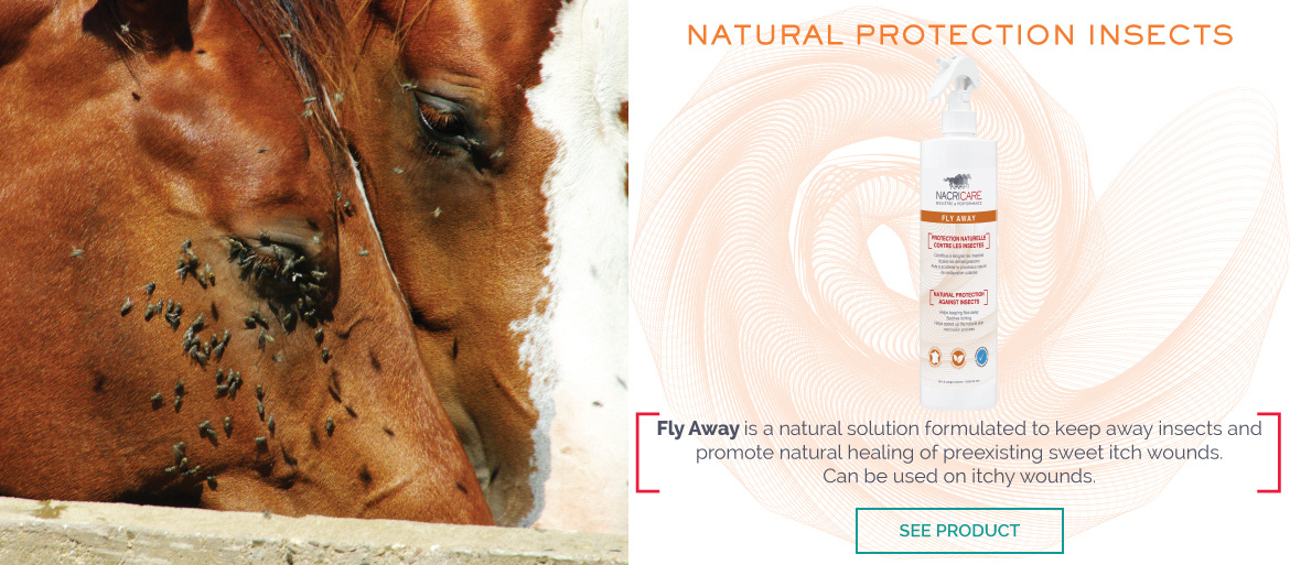 Fly Away NACRICARE - Fly repellent for horse