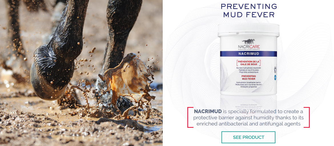 Nacrimud NACRICARE - Preventing Mud Fever