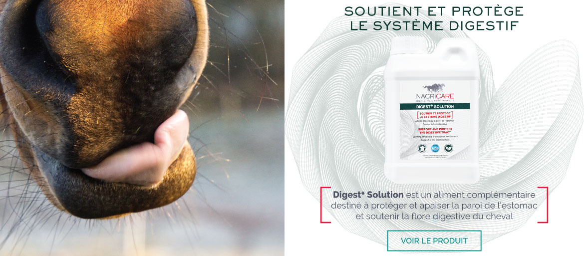 DIGEST PLUS SOLUTION NACRICARE - Ulcère Cheval